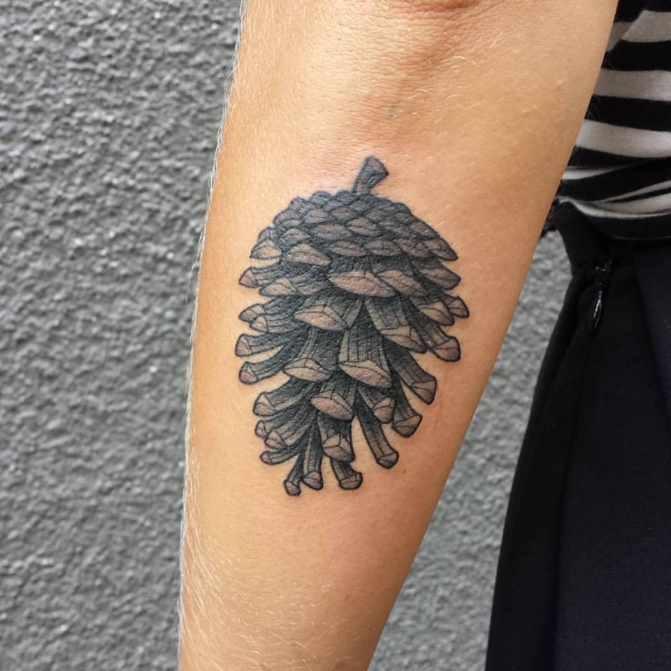 Pine cone tattoo tatuata for Ponderosa pine tattoo