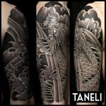 Taneli